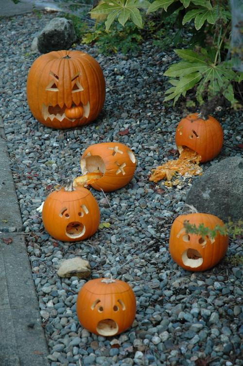 Oie_pumpkinscene07