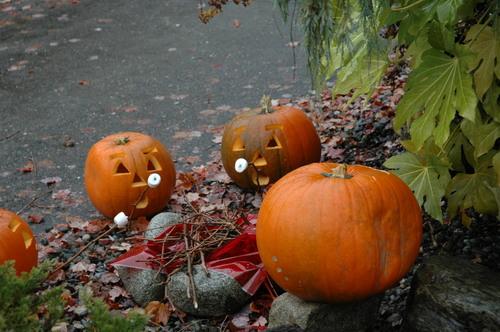 Oie_halloween08_014